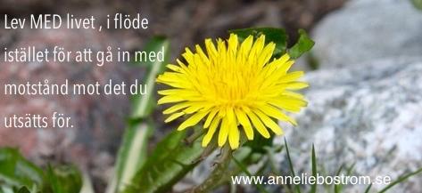 Lev MED livet istället för att vara emot.anneliebostrom.se.